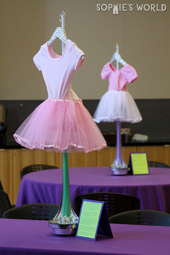 Dancewear to be donated sophie-world.com
