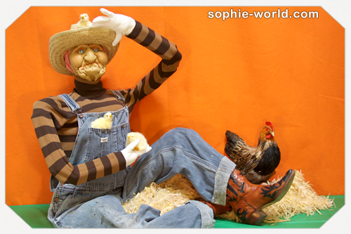 A scarecrow works well as a dummy|sophie-world.com