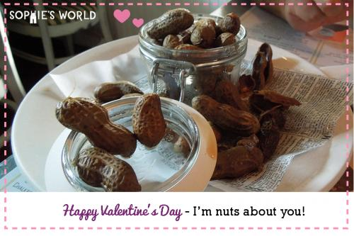 My Punny Valentine-I'm nuts about you|sophie-world.com