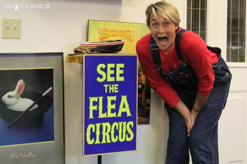 Playland not at the beach|Flea Circus|sophie-world.com