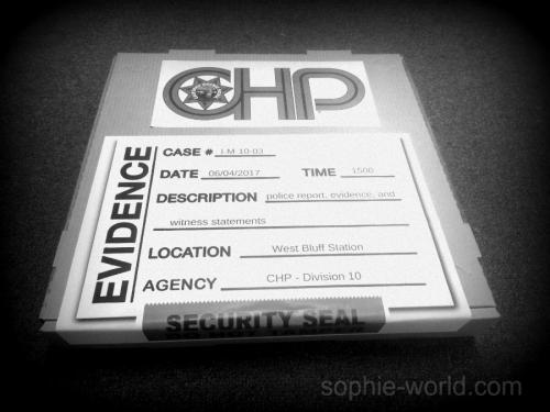 CHipS crime box   sophie-world.com