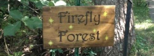 fairy forest sign | sophie-world.com