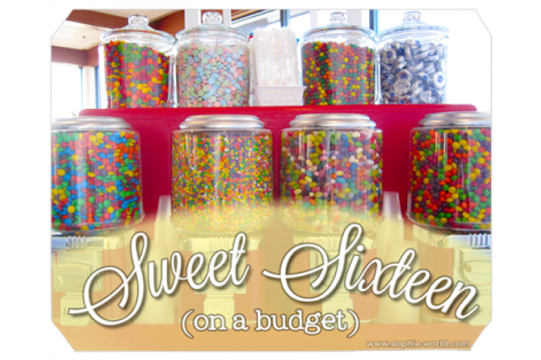 A budget friendly sweet sixteen party|sophie-world.com